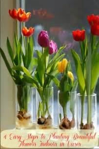 Depression Glass Vase 4 Easy Steps To Planting Beautiful Flowers Indoors In