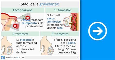 mal di testa inizio gravidanza fasi della gravidanza calcolo e calendario settimana per