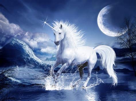 imagenes de animales unicornios el 250 ltimo unicornio megapost 80 fondos hd alegorias es