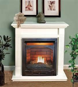 Ventless Propane Fireplace Ventless Fireplace Pictures Vanguard Mini Ventless Gas