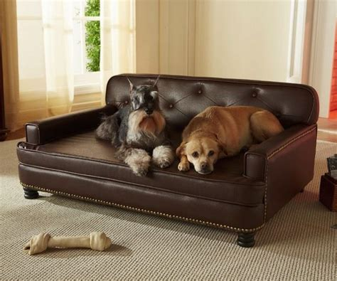 pet friendly sofa material how to choose pet friendly fabrics
