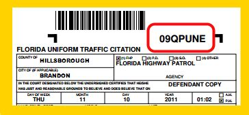 how much is a light ticket in florida light ticket lookup decoratingspecial com