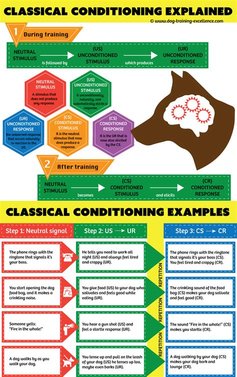 classical conditioning a basic form of learning