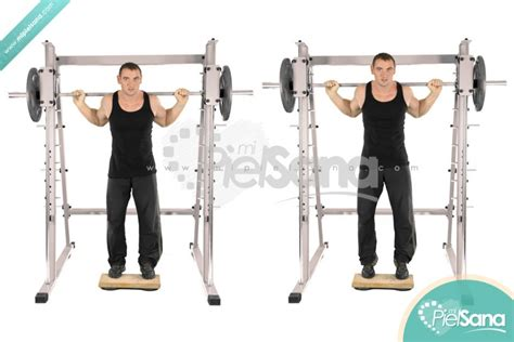 smith machine seated calf raise elevaci 243 n pantorrillas parado