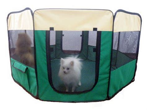 pet dog play  large  tent puppy cat exercise