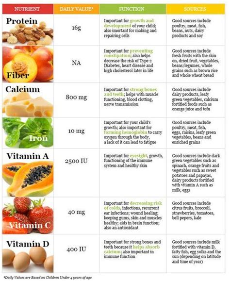 sle of high fiber diet list of nutrients sources for health diet protein