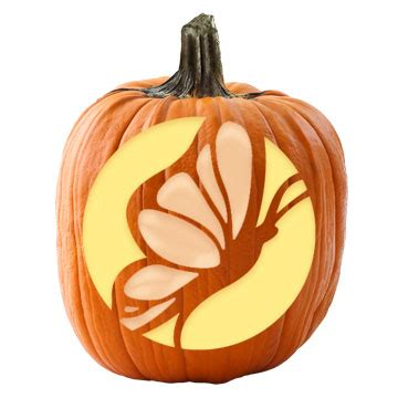 butterfly pumpkin carving stencil www pixshark com images galleries with a bite