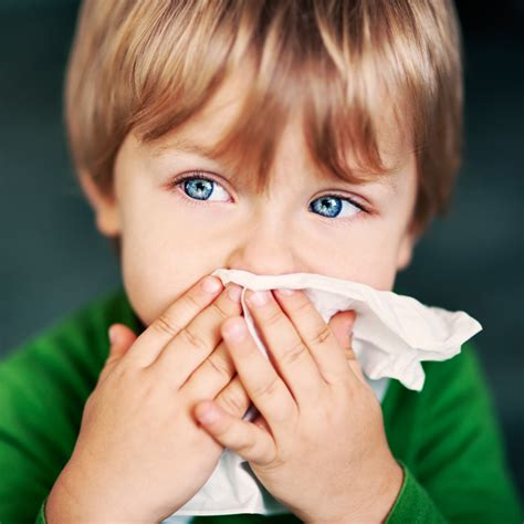 Cold Recipes by Is It A Common Cold Or An Allergy Living And Loving