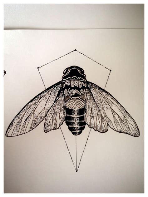 cicada drawing google search tattoos ideas pinterest