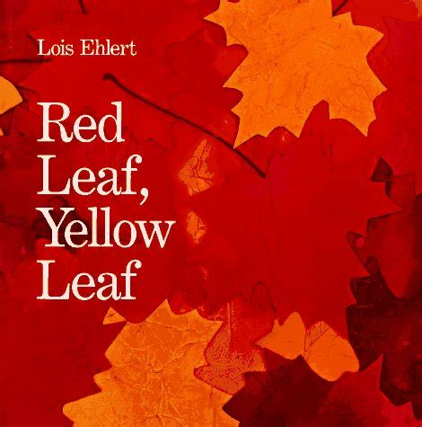 it s a long story day 16 red leaf yellow leaf