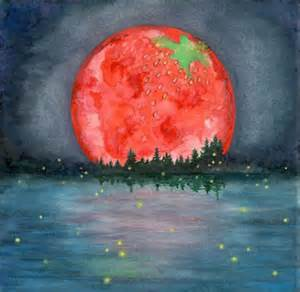 strawberry moon full strawberry moon june 20 2016 shifting vibration