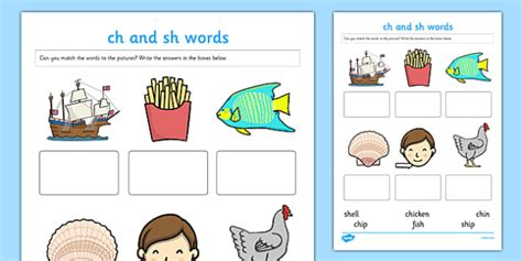 sh pattern words quot ch quot and quot sh quot sounds matching activity worksheet worksheet