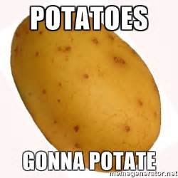 Meme Potato - potatoes gonna potate potato meme meme generator