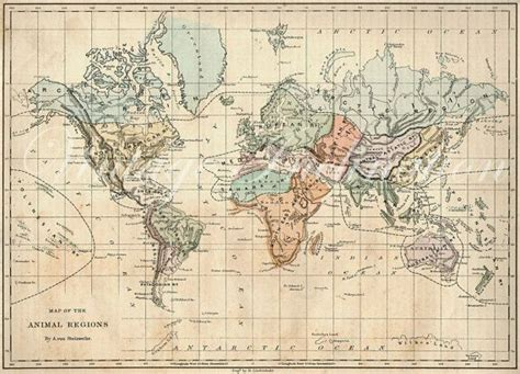 antique world map   world  atlas animals