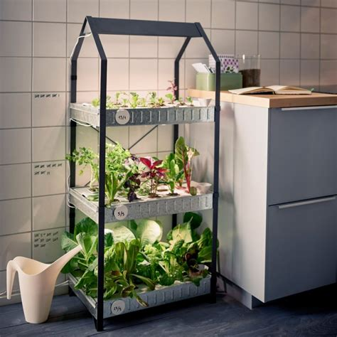 krydda v 228 xer kit for indoor gardening by gardenoholic