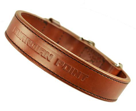 Premium Leather premium leather flat collars guardian point