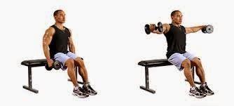 Kursi Untuk Fitnes inilah cara mudah untuk membentuk otot sayap eas sports