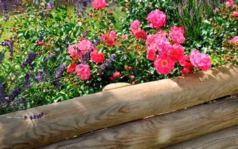 aiuole giardino fai da te cordoli per aiuole fai da te