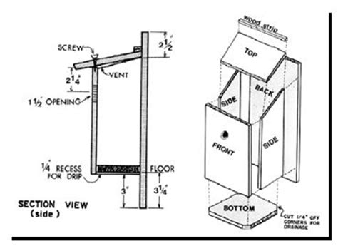 bluebird house plans pinterest the world s catalog of ideas