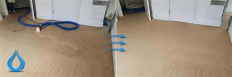 upholstery cleaning romford carpet cleaning services in romford uk carpet cleanic