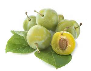prune reine claude fruits