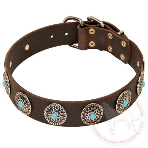 collars for puppies buy wide leather corso collar blue stones walking