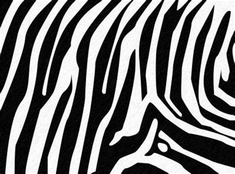 photoshop zebra pattern tutorial animal skin text text effects