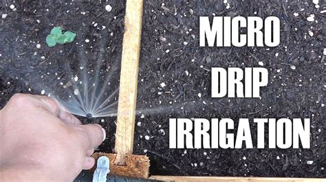 adding microdrip irrigation  raised bed garden