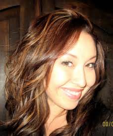 brown hair with highlights 35 glamorous dark brown hair with highlights creativefan