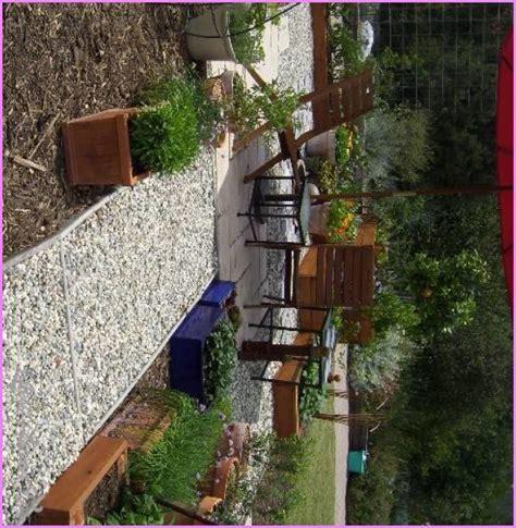 ideas for gravel gardens 10 small gravel garden design ideas latestfashiontips