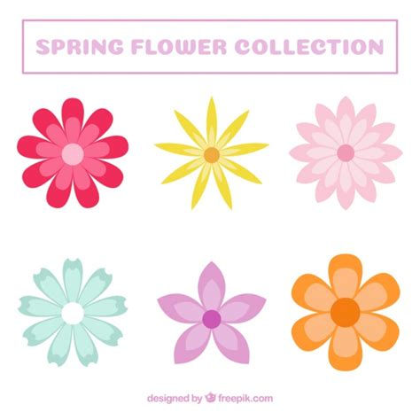 decorative flowers set of colored decorative flowers vector free download