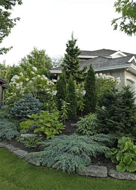 Evergreen Landscaping Ideas Beautiful Display Of Landscaping With Evergreens This Is A Berm Built For Privacy It Serves It