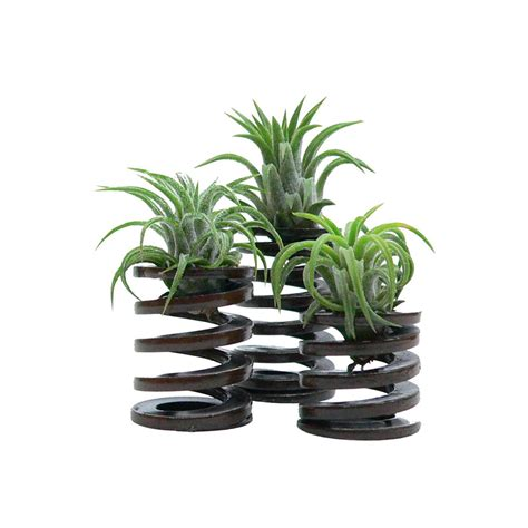 bathroom artificial plants artificial bathroom plants uk 28 images the best 28
