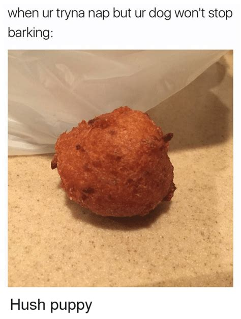 wont stop barking 25 best memes about hush puppies hush puppies memes