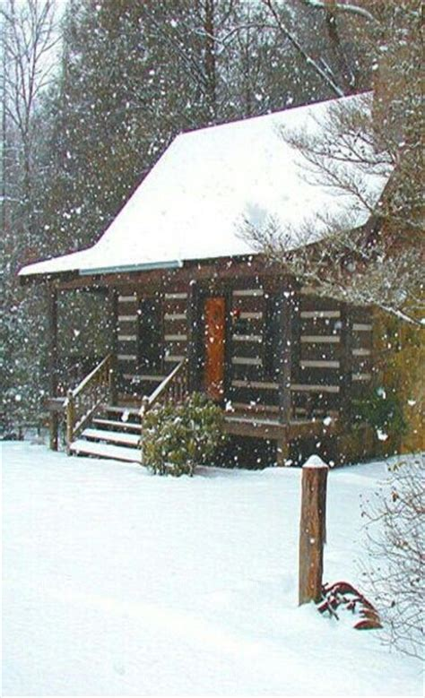 cabin fever a mountain books 65 best images about house plans on house
