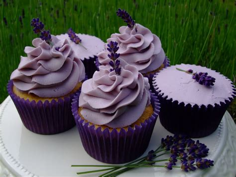 colourful cupcakes of newbury lavender cupcakes