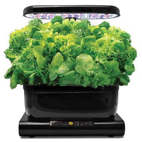 aerogarden hydroponic indoor herb garden salad greens seed