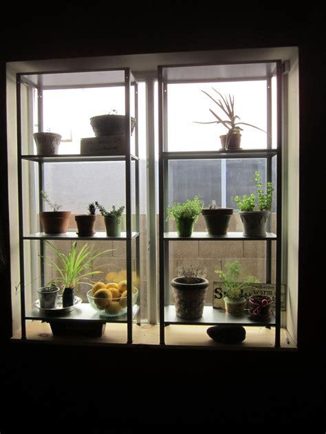 window herb 12 best window herb garden images on herbs
