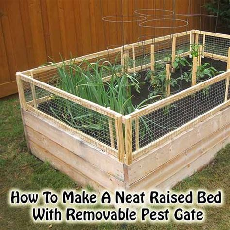 Pinterest Raised Garden Beds - how to make a neat raised bed with removable pest gate garden pinterest raised beds beds