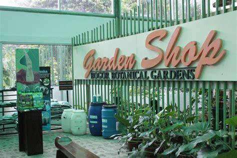 Bibit Anggrek Kebun Raya Bogor limakaki berkunjung ke kebun raya bogor jangan lupa