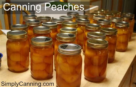 peaches hot house water bath canning easy step by step directions to use
