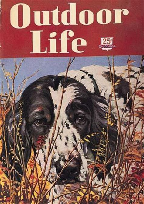 outdoor life outdoor life magazine cover art