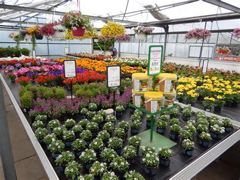 gartenbau henstedt ulzburg florist und floristin berufliche schule elmshorn