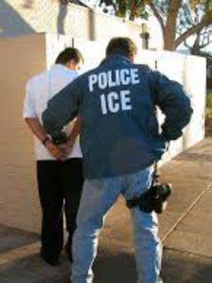 How To Sponge A Criminal Record In Florida Hundreds Of Dangerous Illegals Captured In Fl Newstalk Florida