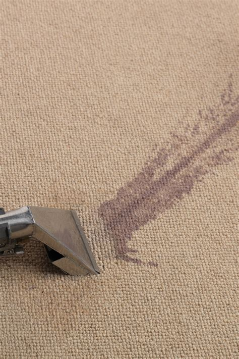 spot clean wool rug the cleanability of carpet fibres is wool or synthetic carpet easier to clean the woolsafe