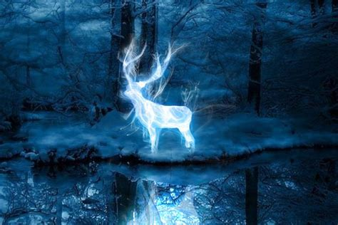 test patronus take pottermore s new patronus quiz to find out if you re