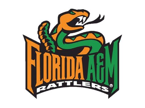 Famu Mba Review by Florida Agricultural And Mechanical Famu