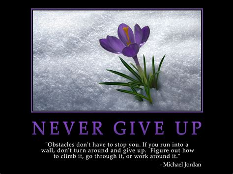 never give up aarti krishnakumar this monday never give up