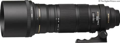Sigma Dustpan Pengki Large sigma 120 300mm f 2 8 ex dg os hsm lens review
