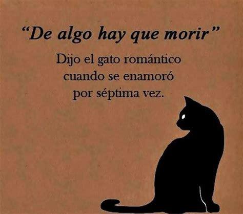 libro por que existe el quot de algo hay que morir quot dijo el gato rom 225 ntico tnrelaciones